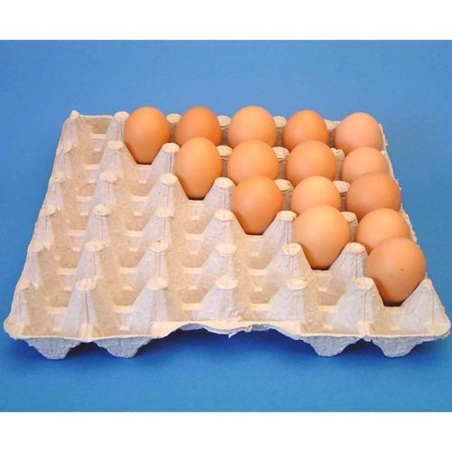 Basic needs universal packaging industry for How to make paper egg trays